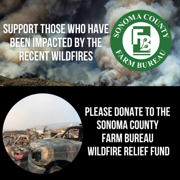 Wildfire Donation